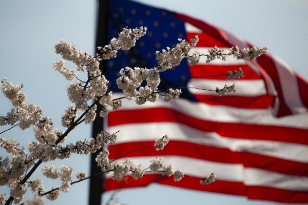 american-flag-flower-july-4th-600x400.jpg